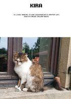 NPC : Capítulo 8 página 45