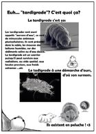 Jean-Norbert le tardigrade : Chapitre 1 page 26