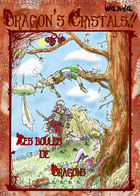 DragonBurn!! : Chapitre 1 page 1